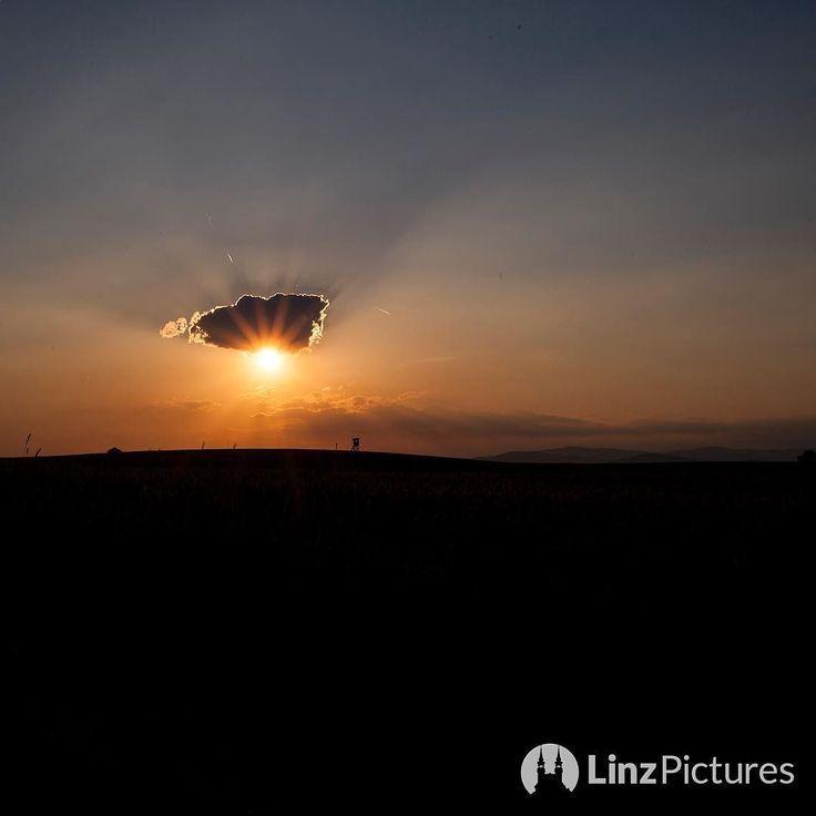 . . . #sundown #sun #linz #igerslinz #upperaustria #nightout #cloudporn #sunny #cloud #sky #view #ferien #abend #travelgram #teamcanon #linza #city #mood #qualitytime #visitaustria #österreich #heimat #home #sonne #sonnenuntergang
