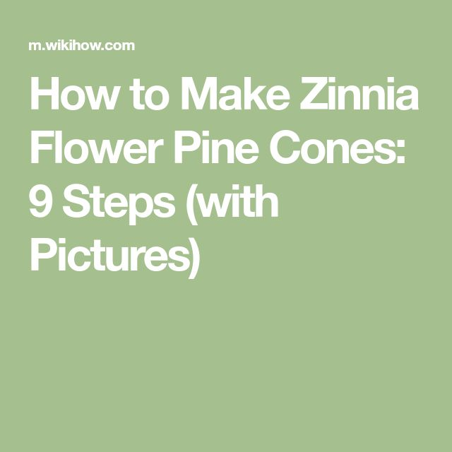How to Make Zinnia Flower Pine Cones: 9 Steps (with Pictures)