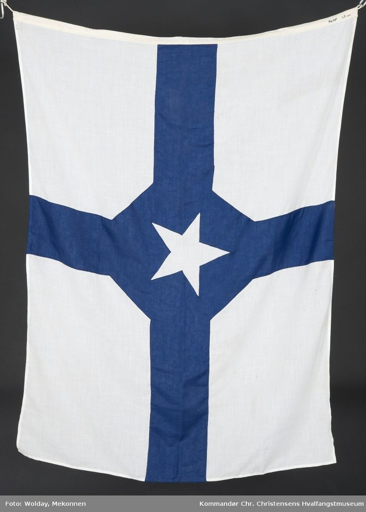 Kosmosflagg i blått og hvitt, med stjerne.