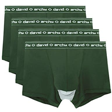 Best Men's Underwear for Keeping Everything Cool: David Archy Men's Micro Modal Separate Pouches Trunks Underwear