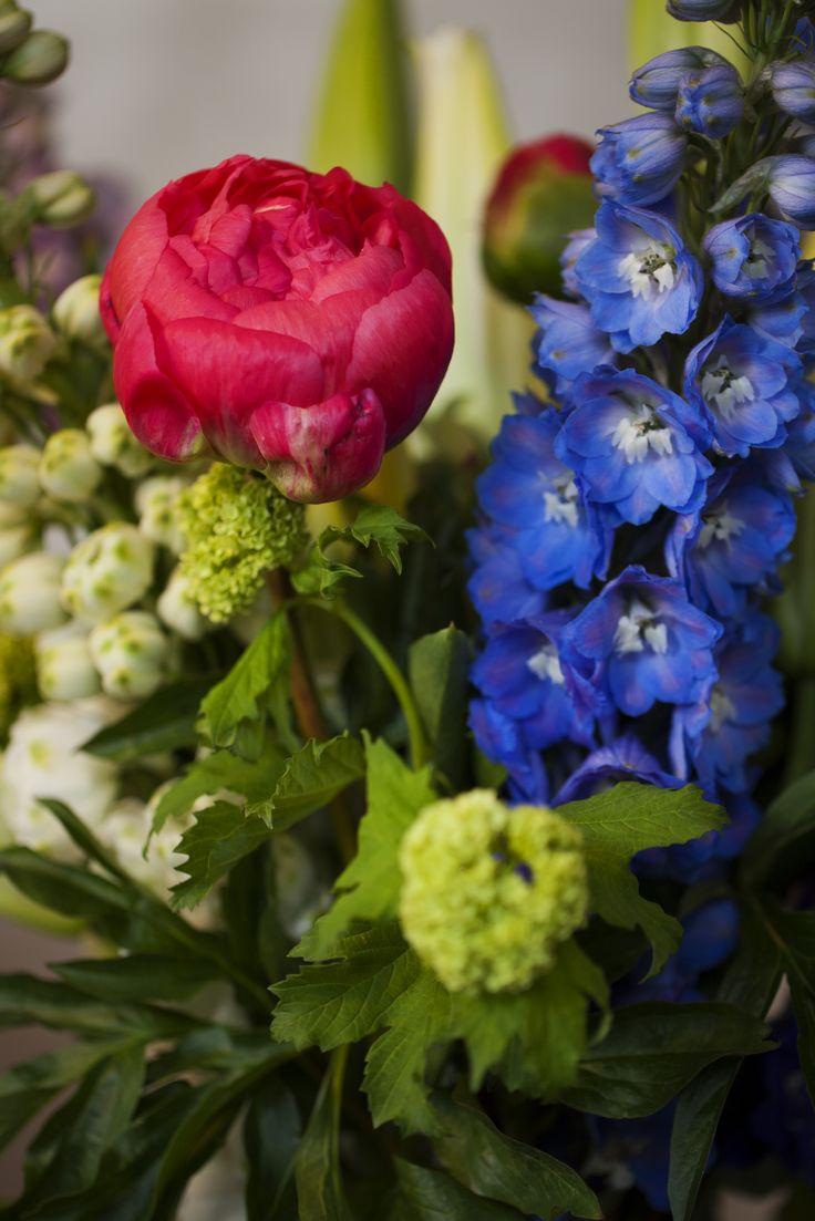 Amazing flowers @ bloomista.co.nz