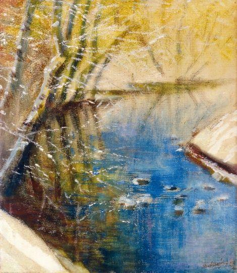 Mednyánszky, László (1852-1919) Water-side landscape