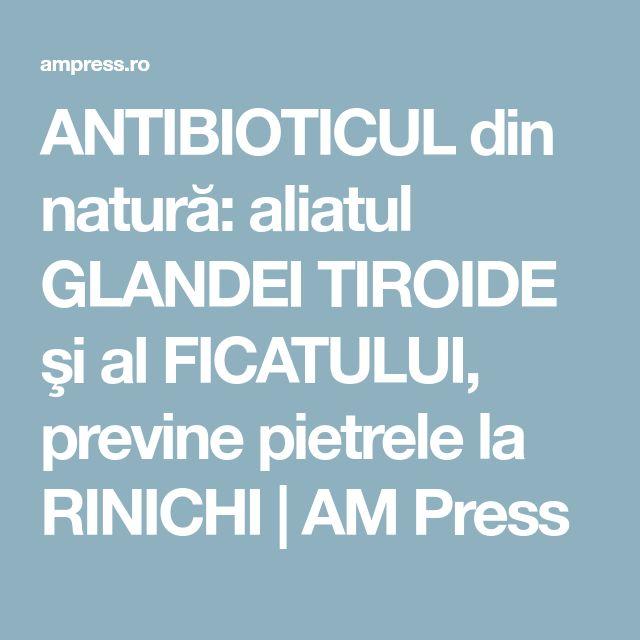 ANTIBIOTICUL din natură: aliatul GLANDEI TIROIDE şi al FICATULUI, previne pietrele la RINICHI   AM Press
