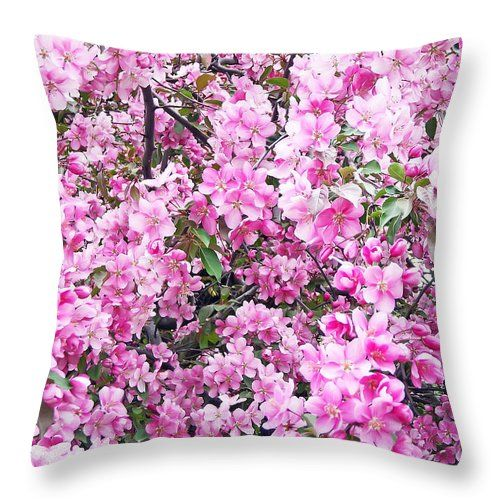Apple Blossoms Throw Pillow for Sale by Aimee L Maher Visit ALMGallerydotcom  Pillows are made from 100% spun polyester poplin fabric and add a stylish statement to any room. They are available in sizes from 14x14  to 26x26. Each pillow is printed on both sides (same image) and includes a concealed zipper and removable insert (if selected) for easy cleaning. Be sure to use the Cropping Tool when ordering pillows to ensure the photo is centered to your liking