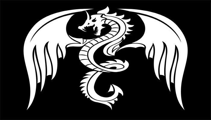 Sociedad del Dragón Blanco: luchando contra el «Nuevo Orden Mundial» | Dragón  blanco, Dragones, Gran dragón