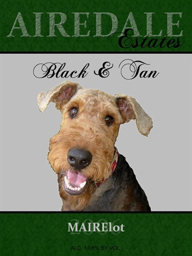 Airedale Terrier Rescue & Adoption - Black & Tan MAIRElot ...