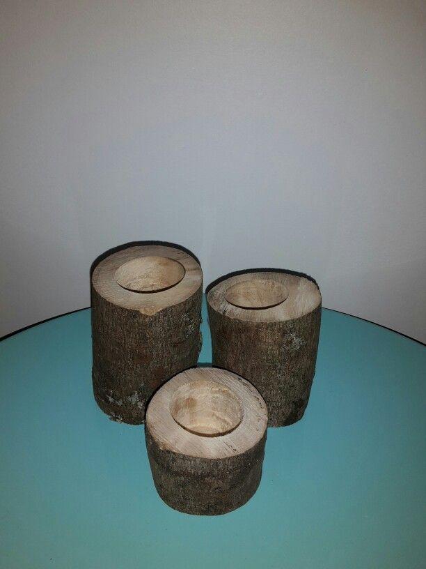 Wood succulent holder