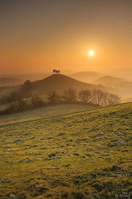 Colmer's Hill Dorset