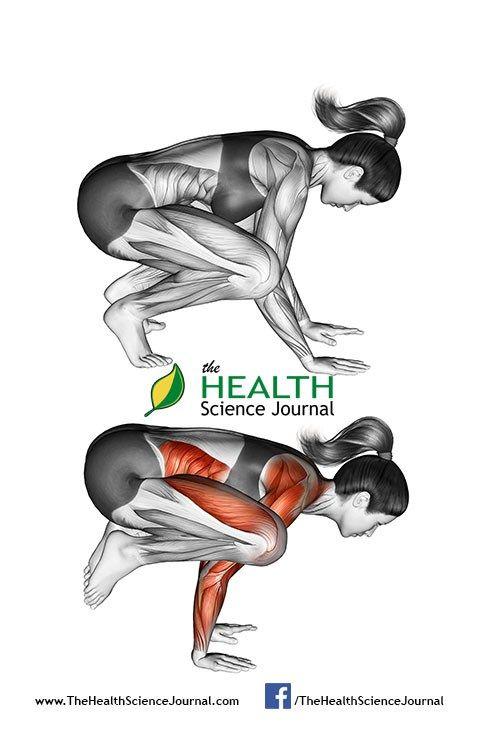 © Sasham   Dreamstime.com - Yoga exercise. Crane Pose. Bakasana. Female