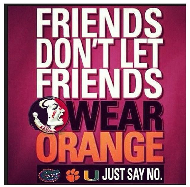 a042f1122bc385f2d7c4971a36c92a66 too funny true stories 279 best love my noles!!! images on pinterest florida state