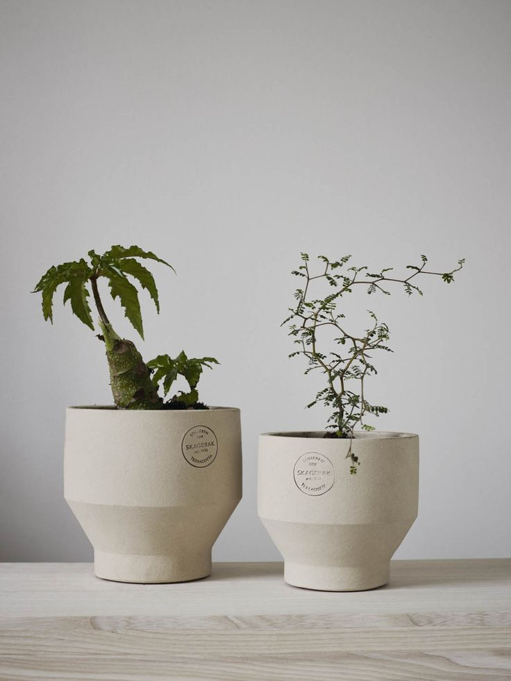 A series of Scandinavian terracotta vessels that draw inspiration from ancient Greek and Egyptian footed vessels. Designed by Stilleben, a design shop located in the heart of Copenhagen, this series of indoor-outdoor planters are a beautiful complement to your patio or living room. The series is inspired by classic Greek and Egyptian vases that were …