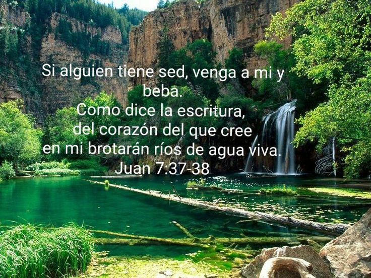 Resultado de imagen para Juan 5,37-38