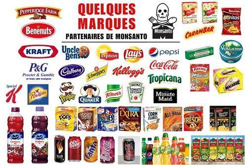 &qout;Monsanto&qout;, vous avez probablement déjà entendu ce nom associé à celui d'OGM, de plus en plus pointé du doigt dans les scandales sanitaires. Il vient en fait d'un industriel américain spécialiste des biotechniques agricoles (malheureusement aussi présent dans l'agriculture européenne)…