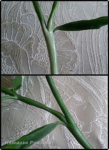 Сборный МК по сборке веточек,креплению листиков,чашелистиков, и лепке декоративной зелени. фото 4