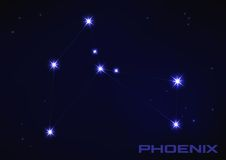 phoenix constellation - Google Search
