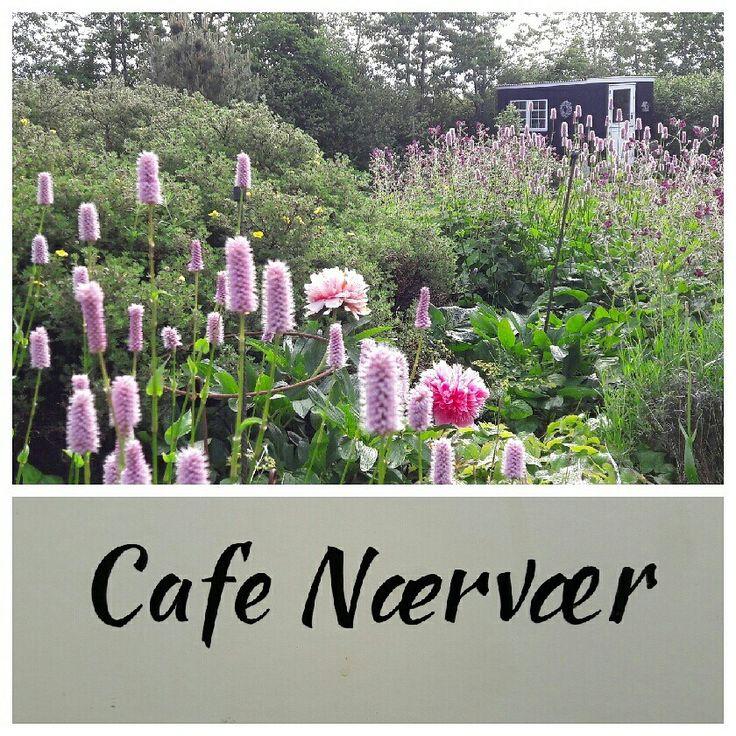 Cafe Nærvær. I skurvognen har vi indrettet en lillebitte cafe.
