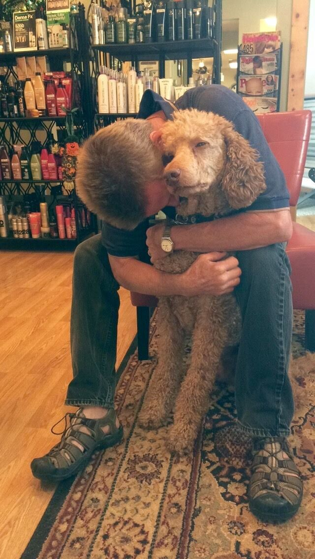 So sweet. Nothing better than the gentle love of a loyal poodle.