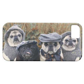 Pug Fall Fashion Phone Case iPhone 5 Covers