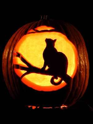 moonlit cat pumpkin carving many more examples on the website - Cool Halloween Pumpkin Designs