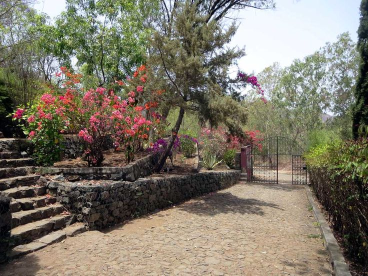 The Jardim Botanico Nacional Grandvaux Barbosa on Santiago Island, Cape Verde, is named for Portuguese botanist Luis Augusto Grandvaux Barbosa (1914-1983).