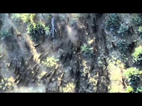 BBC Planet Earth - Trailer HD