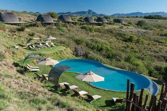 Places of interest in South Africa. Gondwana Private Game Reserve offers Luxury Accommodation and an Authentic African Safari Experience including Free Roaming Big 5 | Luxury Safari Park.....#wildlife #southafrica #photosafari #tourism #extremefrontiers #bush #adventure #holiday #vacation #safari #tourist #travel