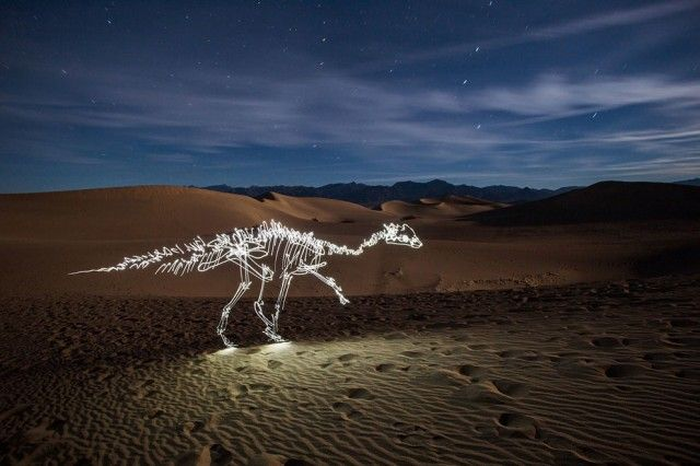 Dinosaur Light Paintings  Here is a new series of light paintings by photographer Darren Pearson which we had already presented the work. Having staged a human skeleton, the artist returns with the dinosaur's carcasses.