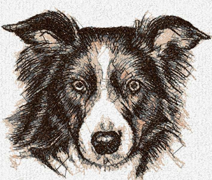 Dog photo stitch free embroidery design 5 -   Machine embroidery forumSize: 7.53 x 6.33'