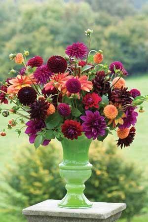 Venetian Dahlia Collection in green vaseAmbition, Con Amore, Downham Royal, Jescot Julie, Jowey Mirella, New Bany, Sam Hopkins, Thomas Edison