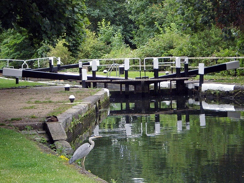 Hanwell Locks, London W7