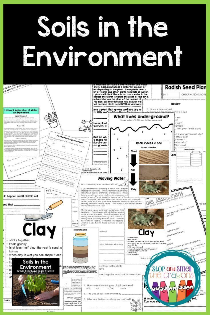 Soil Worksheets 3rd Grade In 2020 Grade 3 Science Science Teaching Resources Teaching Grade