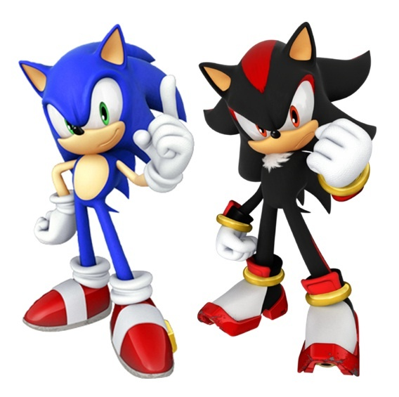 Sonic The Hedgehog And Shadow The Hedgehog Come Together