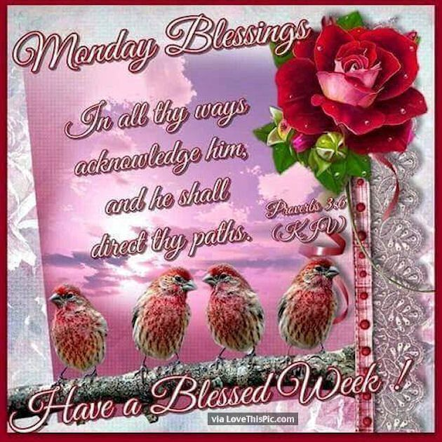 Monday Blessings Have A Blessed Week! Monday Good Morning Monday Quotes  Good Morning Quotes Happy Monday Have A Great Week Monday Quote Happy Monday  Quotes ...