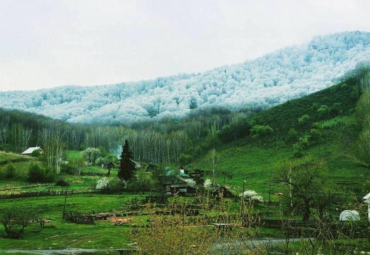 5. De la neige dans les montagnes de l
