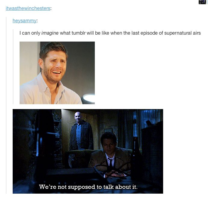 We're not supposed to talk about it. ~ Oh the multitude of gifs that we have. I love it, and if I had the time, I'd go on tumblr...