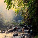 Morning trekking in Sekumpul village  #bali #baliadvisor #balilife #baliisland #naturelover #nature #amazing_travelspots #balitravel #baligasm #baliguide #trekkingtour #kadekbuditours #travelingtobali #balitravel #sekumpulwaterfall #balidaily