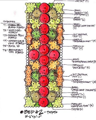 The KK Report: My Biointensive Garden Plan - 26 Best Intensive Gardening Images On Pinterest Vegetable Garden