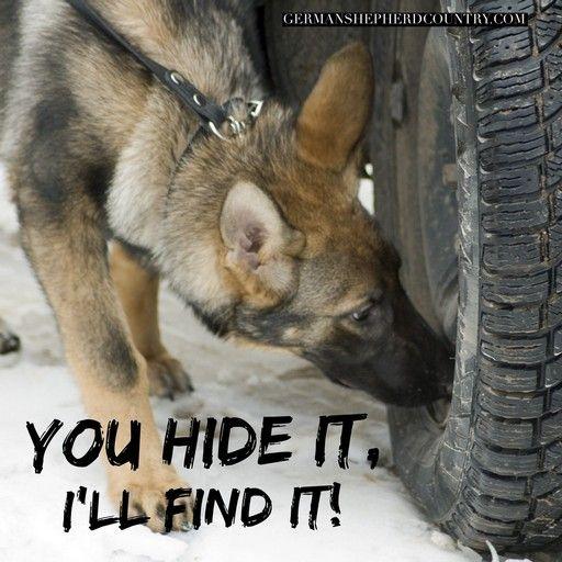 You Hide It