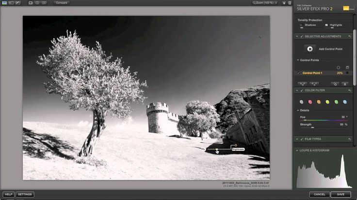 Photography Tutorial - Black and White conversion using Niks Silver Efex Pro 2
