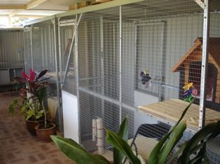 Dog Kennel And Run Coventry