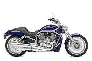 Harley Rentals Harley Davidson V-Rod