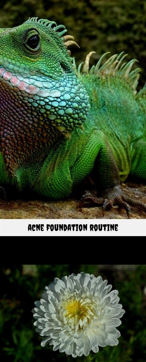 acne foundation routine_251_20180720072314_17 ancestrydna