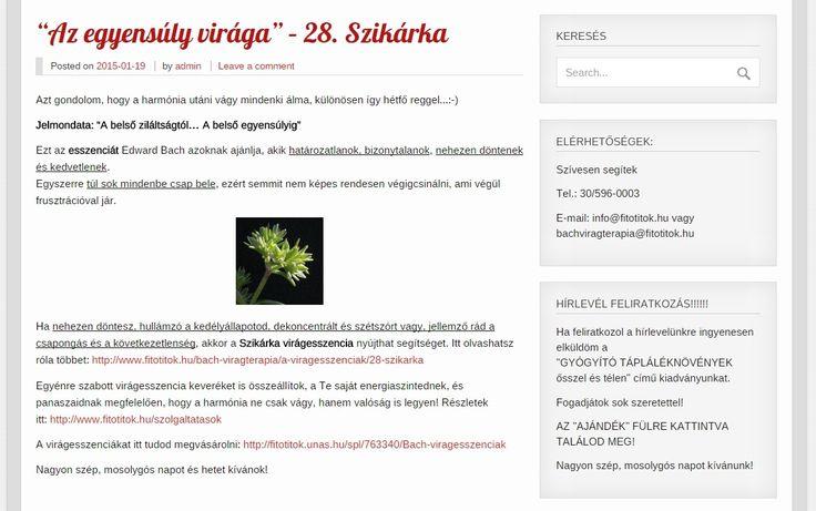 """Az """"egyensúly virága"""" - 28. Szikárka Itt olvashatsz róla többet: http://www.fitotitok.hu/bach-viragterapia/a-viragesszenciak/28-szikarka"""