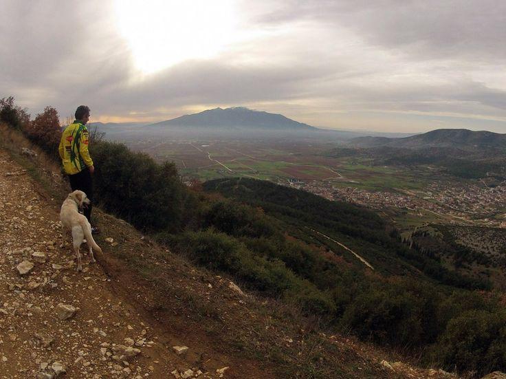 Διήμερο αθλητικών λαϊκών (open) αγώνων και άλλων παράλληλων εκδηλώσεων με την ονομασία Zigos Run and MTB Race 2015 - ''Δασικές Διαδρομές''