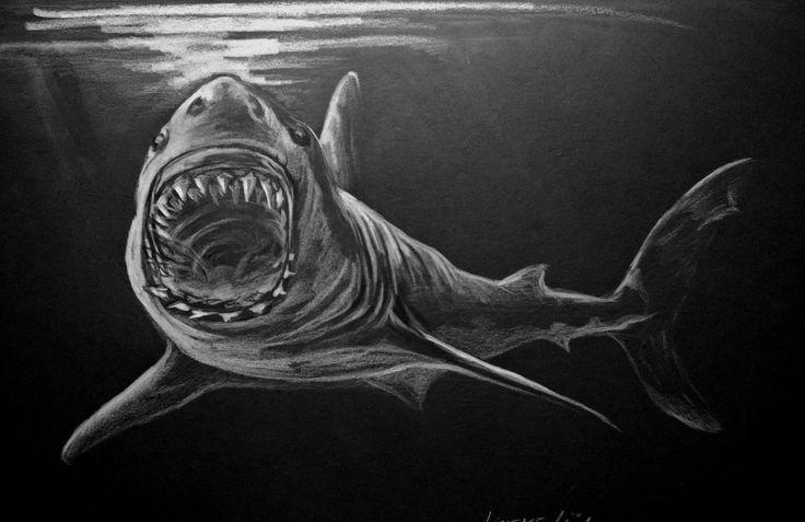 Hoe teken je een Grote Witte Haai / dieren tekenen / #30