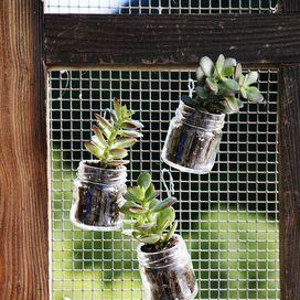 Idee casa: giardini verticali | Donna Moderna
