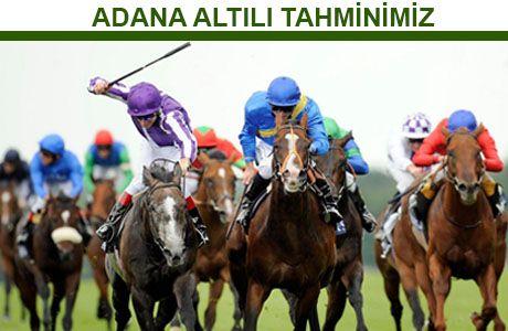 25 HAZİRAN 2016 - ADANA ALTILISI   At Yarışı Tahminleri
