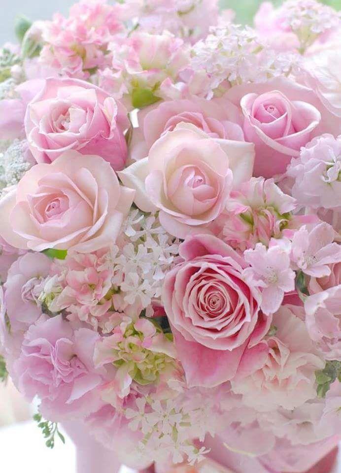 Красивая картинка розовая с цветами