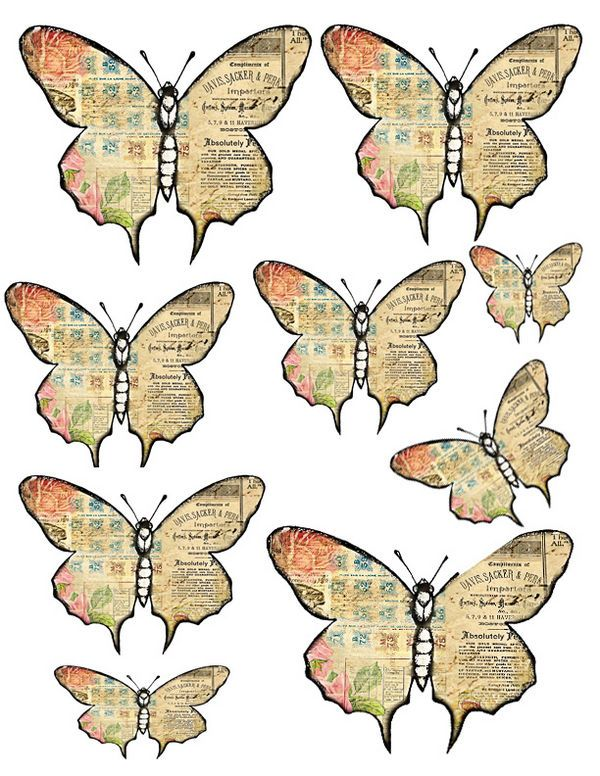 17 Best ideas about Printable Butterfly on Pinterest | Kids ...