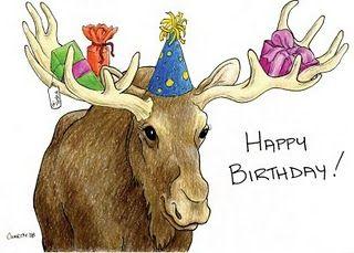 Happy Birthday Moose Moose Deco S Happy Birthday